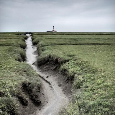 Nordsee 2013 - Westerheven